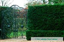 Formal Hedge Plants