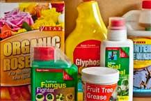 Chemicals & Fertilisers