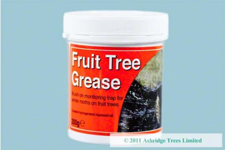 Grease for Fruit Trees with uneven bark