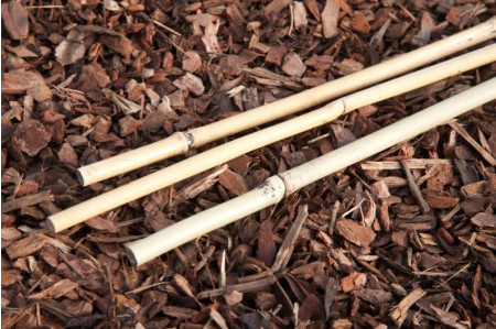 Bamboo canes - 90cms