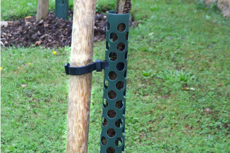 Tree Guards for Standards and established Trees