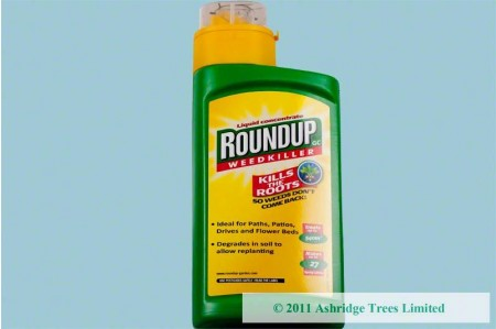 Roundup Concentrated Systemic Weedkiller 540ml
