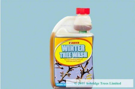 Insect Egg Killer - Winter Wash