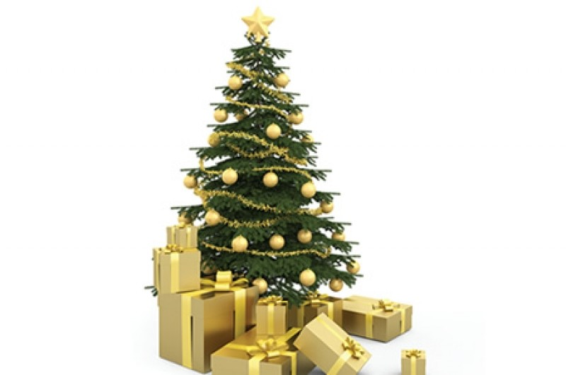 Non Drop Christmas Trees By Post
