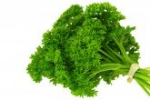 Parsley, Curly  - Petroselinum crispum 'Curly'