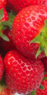 Elegance Strawberries for Sale
