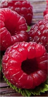 Ruby Beauty Raspberries close up