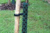 Tree Guard, Heavy Duty