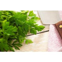 Flat Leaved Parsley