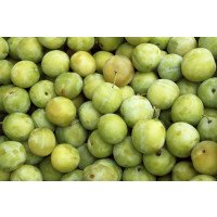 Old Greengage fruit