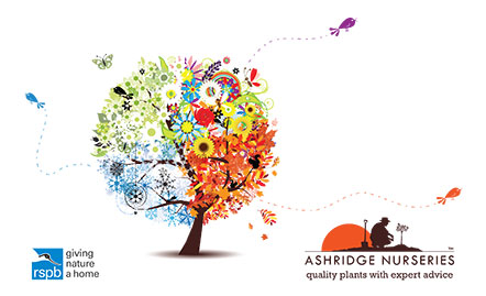 RSPB & Ashridge Nurseries join forces