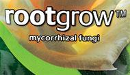 Rootgrow - a factsheet on friendly fungi