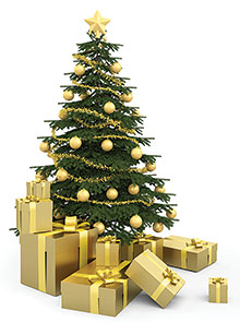 Still time to order your Christmas tree