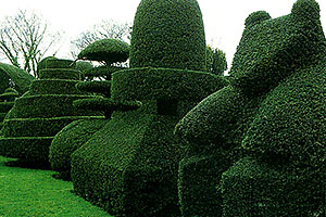 Unusual topiary at Beckley Park