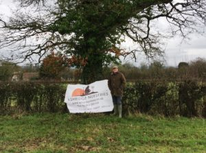 Hedges, hedgerows and hedgelaying